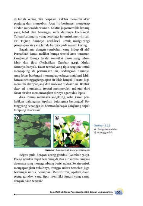 Ilmu Pengetahuan Teman Dan Bunga Cover Senang Belajar Ilmu Pengetahuan Alam