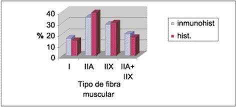 cadenas musculares scielo figura 1 composici 243 n histoqu 237 mica e inmunohistoqu 237 mica de