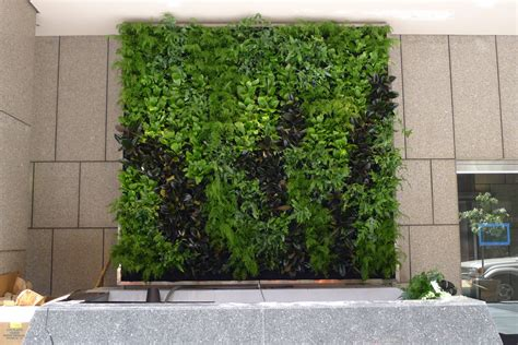 plants on walls vertical garden systems june 2012