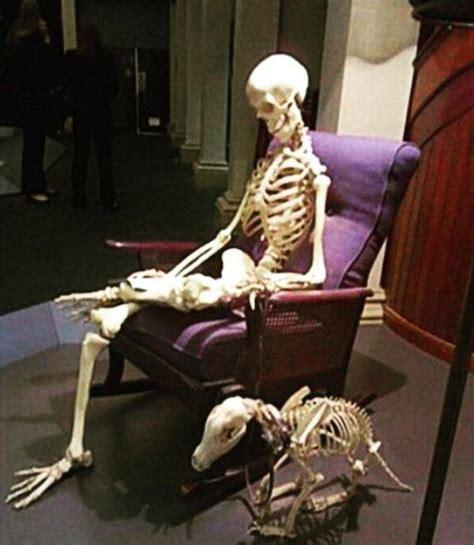 imágenes de una calavera esperando fotos de calaveras esperando gus sastre on twitter quot yo