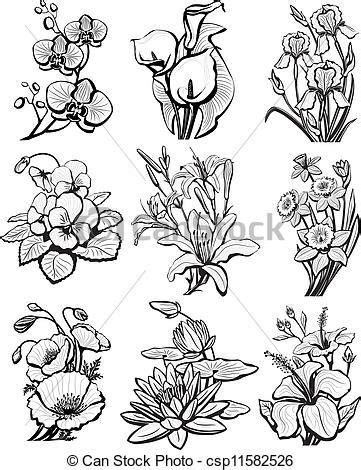 Ilustraciones de Vectores de Conjunto, dibujos, flores