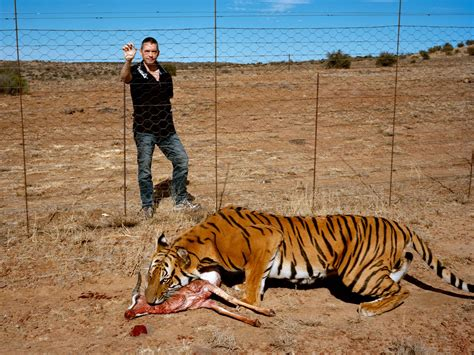 The South the south china tiger is functionally extinct stuart bray