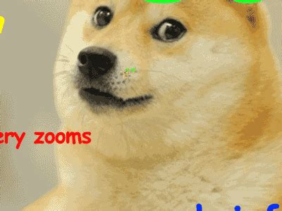 Doge Meme Meaning - so much zoom doge know your meme