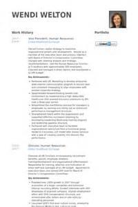 vice president human resources resume sles visualcv