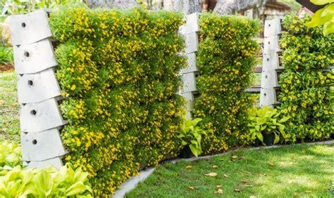 Good 3d Home Design Software by 40 Beautiful Garden Fence Ideas
