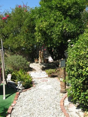 fruit trees los angeles fruit trees in yard picture of goldfinger s get away