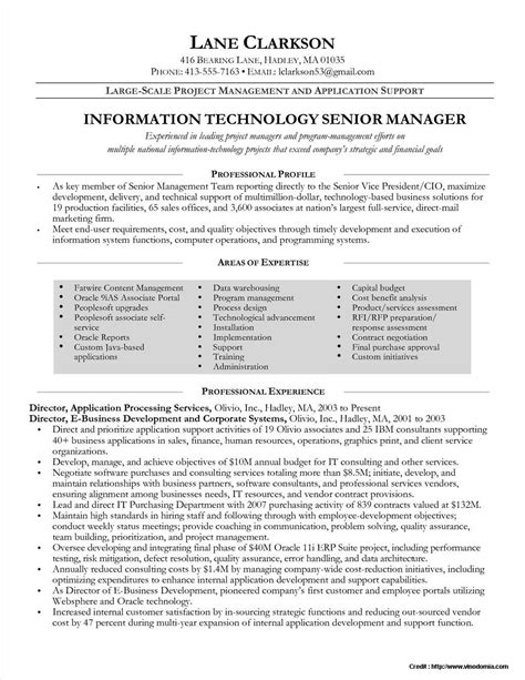 senior project manager resume template resume resume