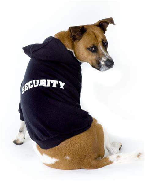 Small Dogs For Home Protection Black Security Hoodie Black Security Shirt