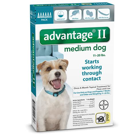 flea treatment for puppies 6 weeks 6 month advantage ii flea medium for dogs 11 20 lbs