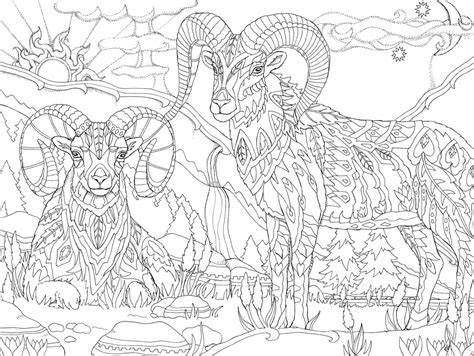 coloring book adults psychedelic coloring book for adults color away ya