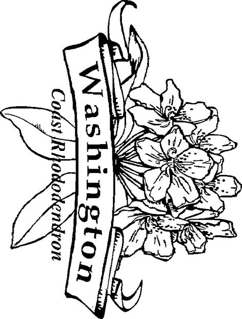 images of state flowers coloring pages - Google Search