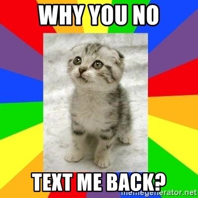 Why You No Meme Generator - why you no text me back cute kitten meme generator