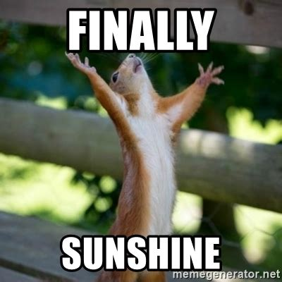 Finally Meme - finally sunshine praising squirrel meme generator