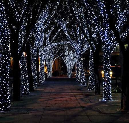 christmas lights winter nature background wallpapers