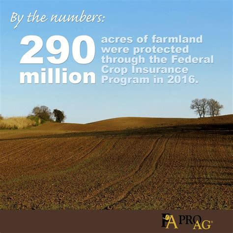 crop insurance important for ag industry washington ag 154 best images about friday ag facts on crop insurance peanuts and friday