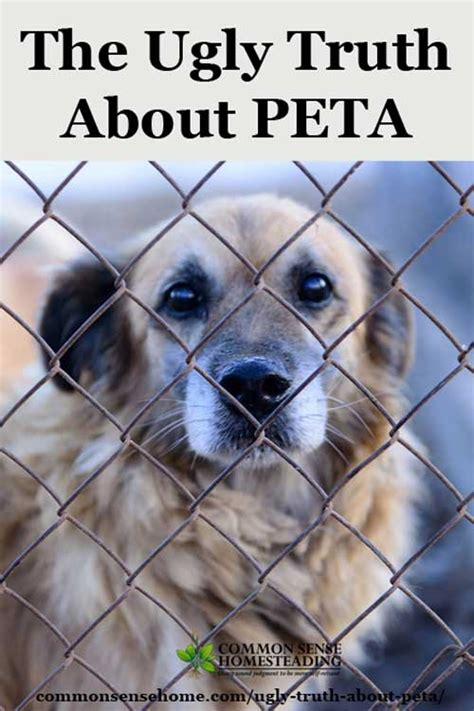 why peta kills books the about peta they re not what you might think