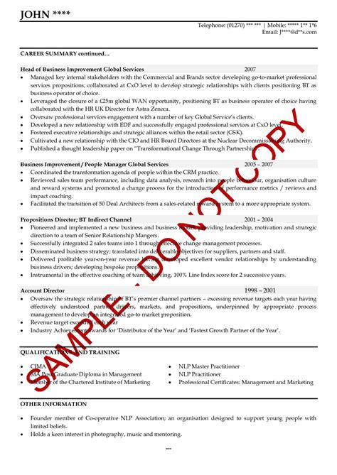Free Resume Samples For Students by Executive Cv Examples The Cv Store