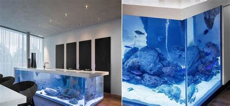 modern aquarium kitchen with a strong visual impact by enhance your kitchen with this limited edition aquarium island
