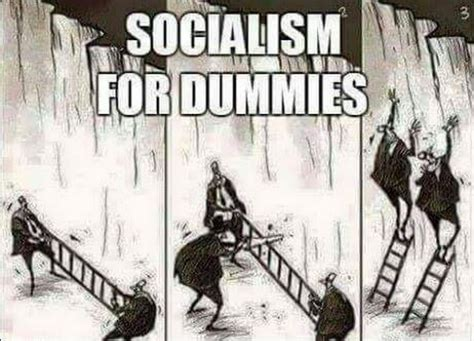 why liberalism failed politics and culture books of the day socialism for dummies common sense