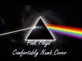 pink floyd comfortably numb cover