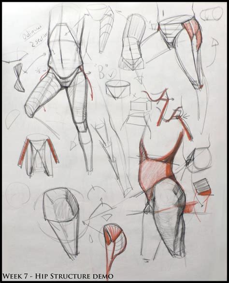 Drawing Human Anatomy by 300 Best Rwv S Fave Tutorials And References Iv Images On