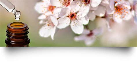 terapia con i fiori di bach fiori di bach