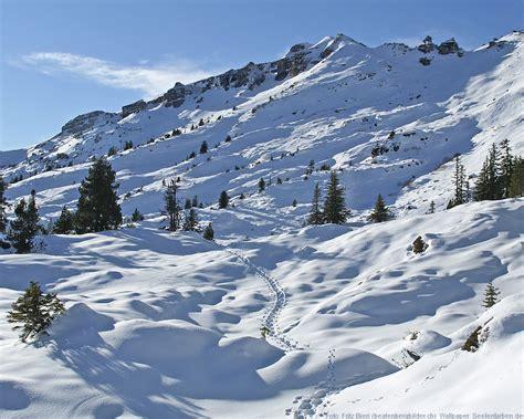 schweiz berner alpen schnee skifahren winter urlaub - Alpen Urlaub Winter