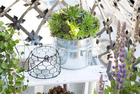 mini balkon mini steingarten balkon garten design ideen um ihr