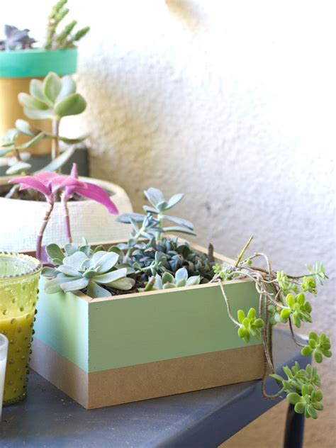 succulent planter box diy painted succulent planter box 187 lovely indeed