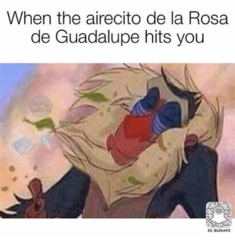 Rosa De Guadalupe Meme - when the airecito de la rosa de guadalupe hits you sc