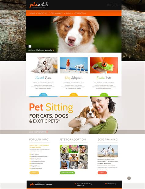 44159 by White Animals Amp Pets Wordpress Theme 44159