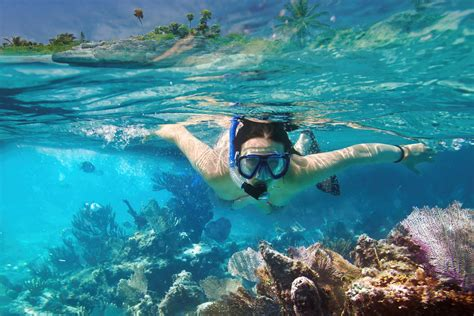 cozumel snorkeling tour and el cielo best tours in cozumel