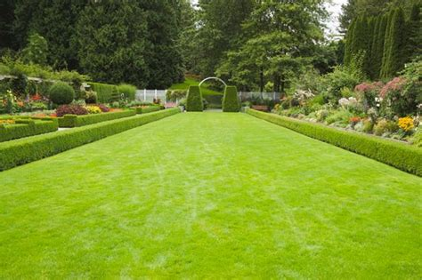 Grass Garden by Diarmuid Gavin On How To Make The Most Of Your Lawn For The Week And This Week S Q A