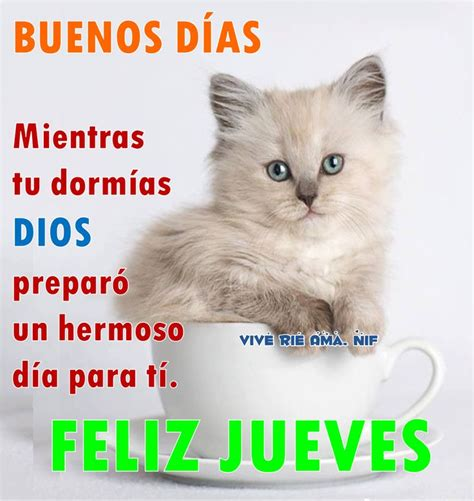 imagenes buenos dias amor jueves 90 best images about jueves on pinterest buen dia keep