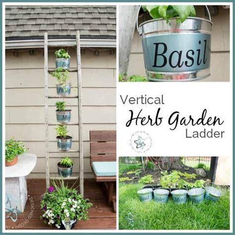 vertical herb garden ladder designed decor