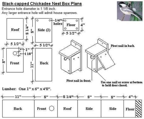 Black Capped Chickadee Bird House Plans Diy For Wild
