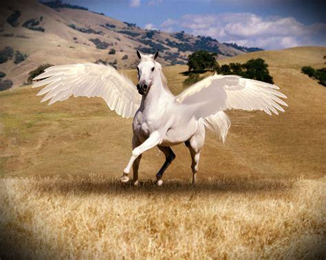imagenes de animales mitologicos mi amigo el photoshop animales mitologicos