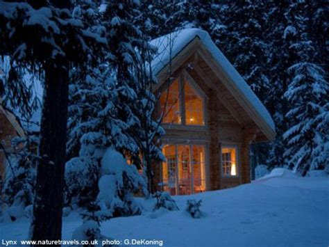 a cabin in the snowy mountains would be the fit