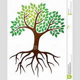 Family Tree Roots Background   1052 x 1300 jpeg 140kB