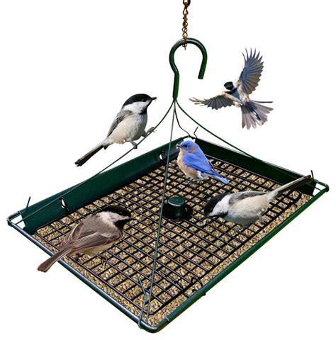 zenport 3 in 1 platform bird seed feeder contemporary
