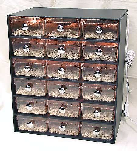 Cheap Reptile Racks For Sale plastic reptile cages tanks and racks snake arboreal