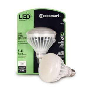 who makes ecosmart light bulbs eco chic sense