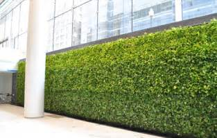 benefits of a vertical garden or green wall amit tyagi linkedin