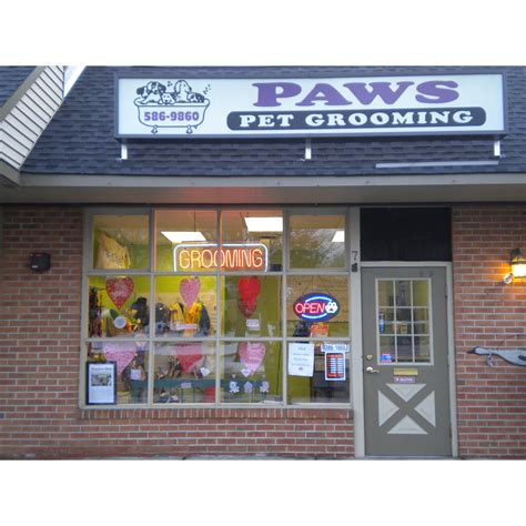 groomers near me paws pet groomers coupons near me in trenton 8coupons