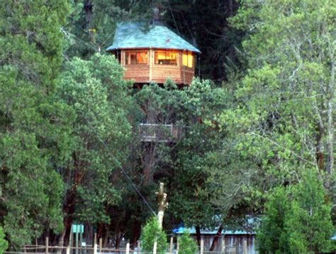 tree house resort oregon tree house resort in oregon oregon resorts lodges pinterest