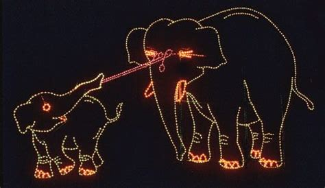 phoenix zoo lights ticket prices zoo lights at the phoenix zoo official travel site for