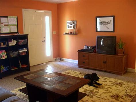 terracotta living room 40 best home interior paint colors images on pinterest
