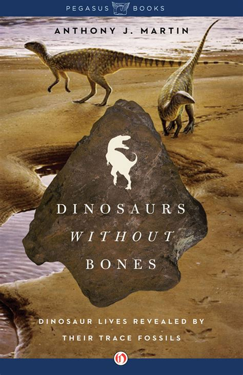 fossil by fossil comparing dinosaur bones books dinosaurs without bones dinosaur lives revealed by their