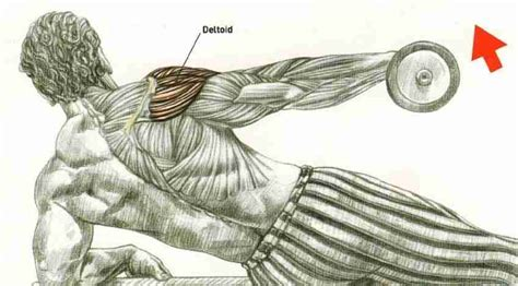 Dumbbell Kecil Incline Side Lateral Raise Exercise Foto