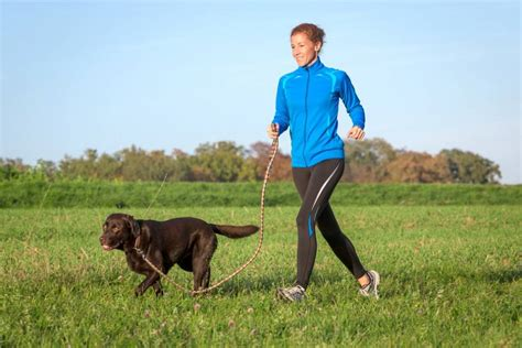 dogs to run with how to start running with your mnn nature network